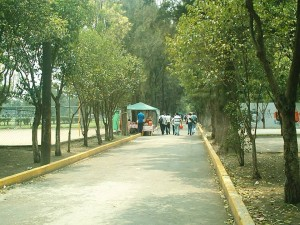 Ciudad Deportiva y la urbanizacion impulsada por la Revolucion Mexicana